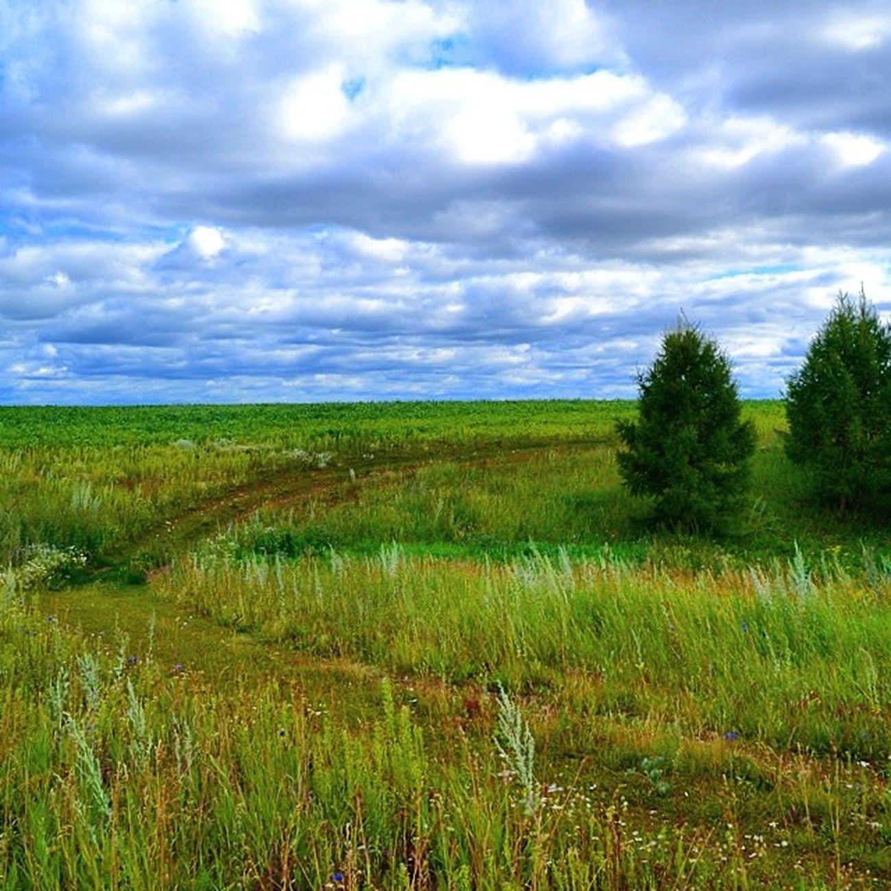 природататарстана Nature Photobygilyazov с.Хасаншаих Арский район