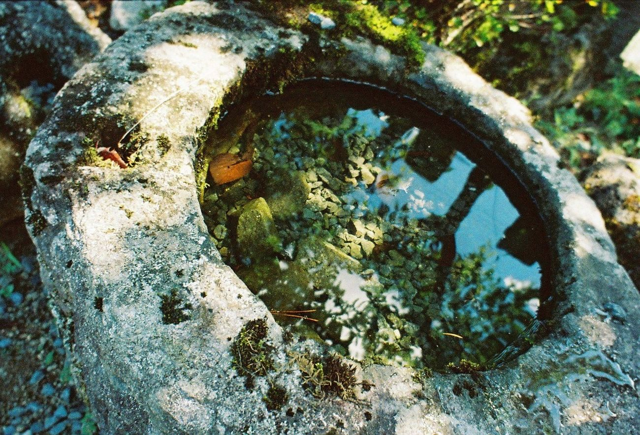 Close-up Nature Summertime Outdoors Day No People Weathered Run-down Water Stone Pot Bowl Reflection Reflections In The Water Moss Wide-angle Lens Film 35mm Film Film Photography Lomography Lomo LC-Wide LC-Wide Japan