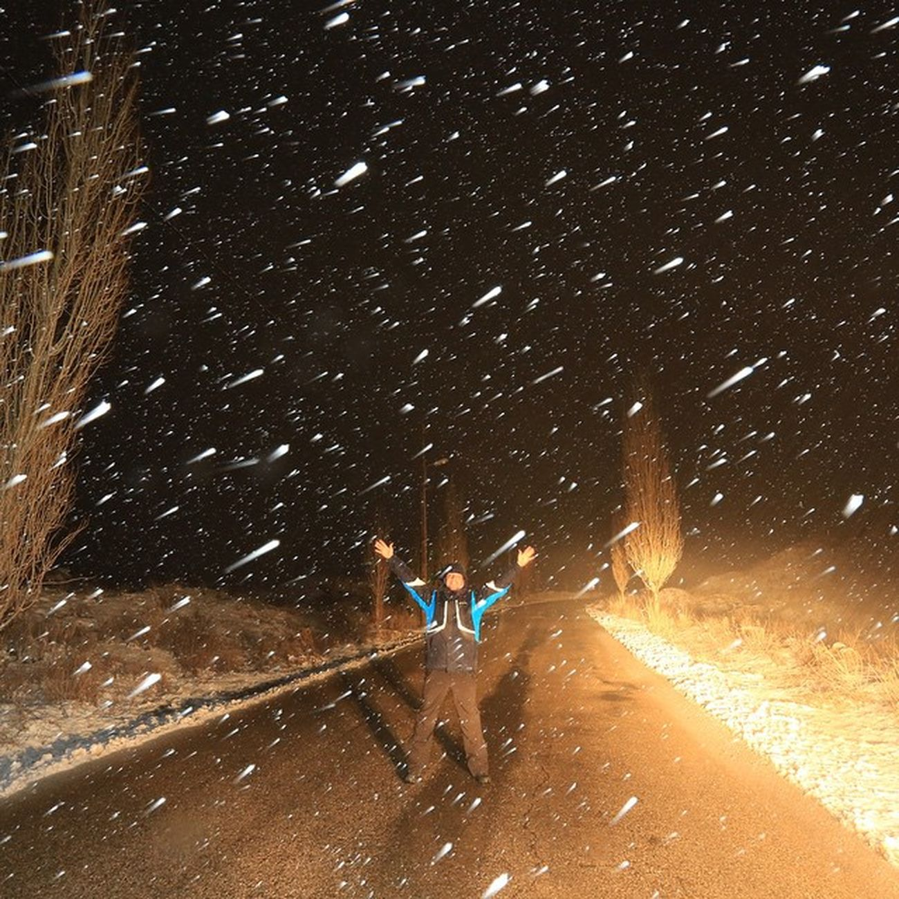 Lebanese#lebanon#arez#snowing#night#rainjng#light#trailing#long#exposure#cedars#tree#forest#me