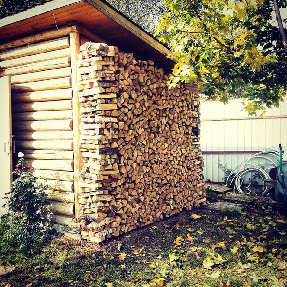 осень дрова