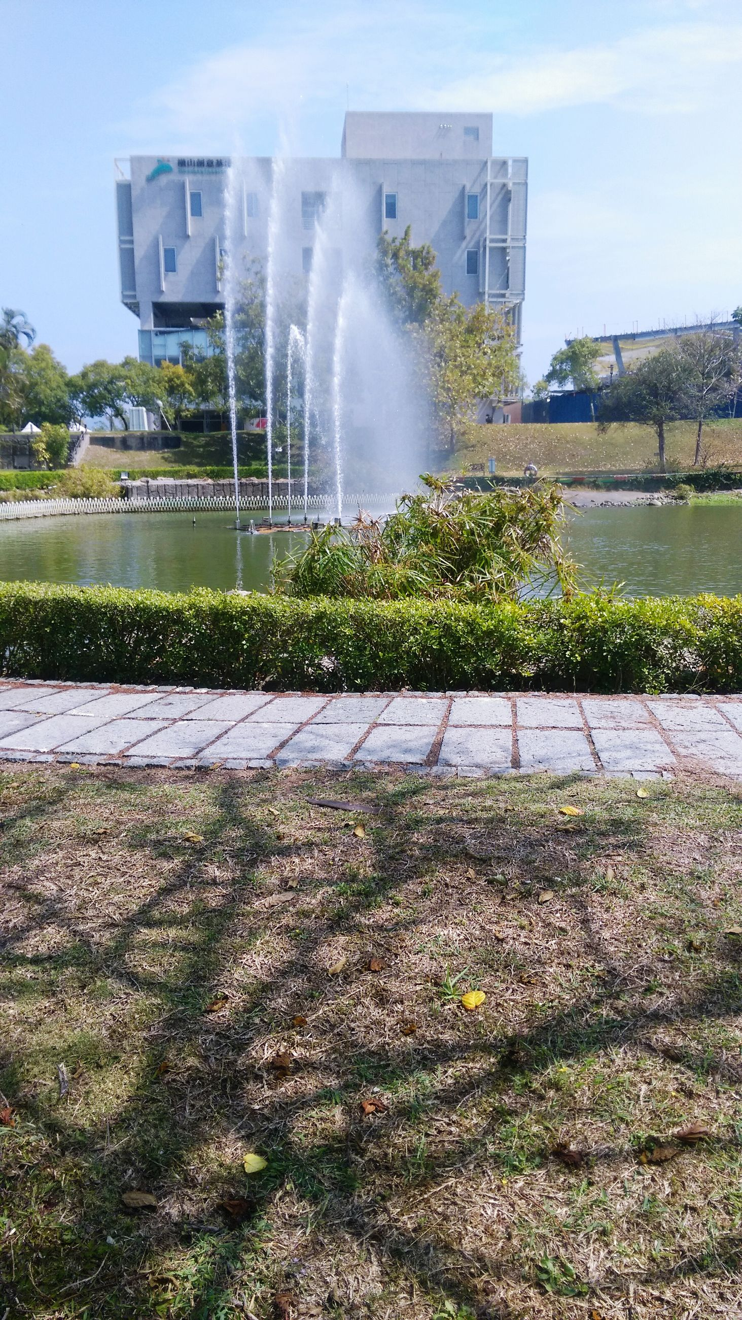 building exterior, built structure, architecture, grass, fountain, sky, sunlight, flower, city, plant, growth, motion, day, lawn, park - man made space, spraying, tree, outdoors, sunbeam, building