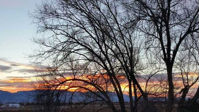 Showcase: December Sunset Winter Snow Trees Mountains Insane Colors incredible view Clouds Sky
