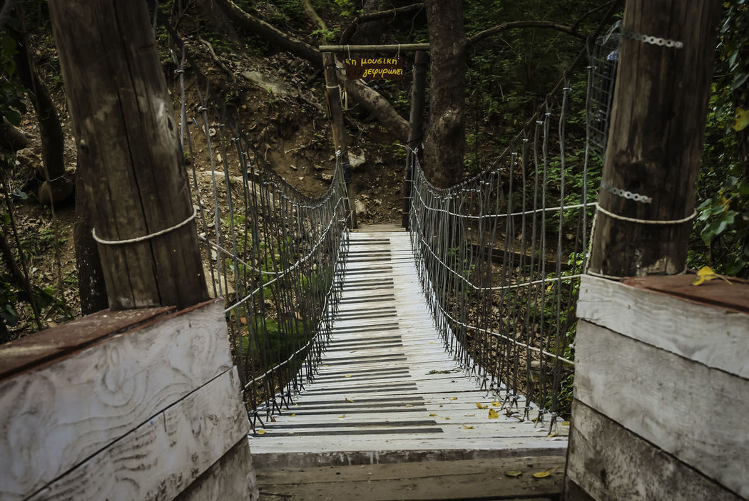 musical bridge.. Bamboo Grove Beauty In Nature Bridge Bridge - Man Made Structure Day Greece Music Brings Us Together Nature No People Outdoors Pavliani Railing Steps Steps And Staircases The Way Forward Tree Wood