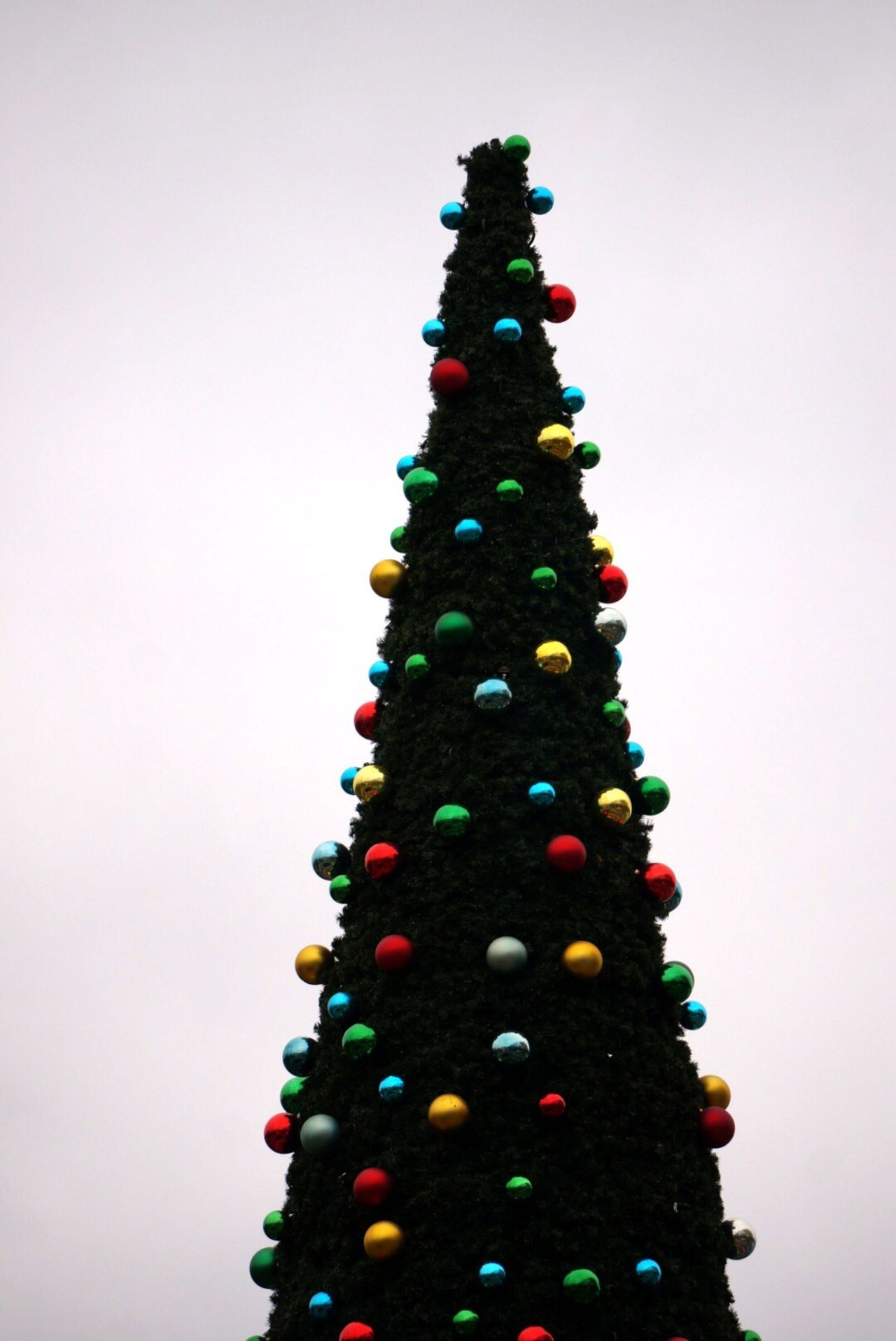 Christmas Tree Festive Season Christmas Christmastree Merry Christmas! Tivoli Trees TreePorn Hugging A Tree Christmas Decorations How You Celebrate Holidays Showcase: December