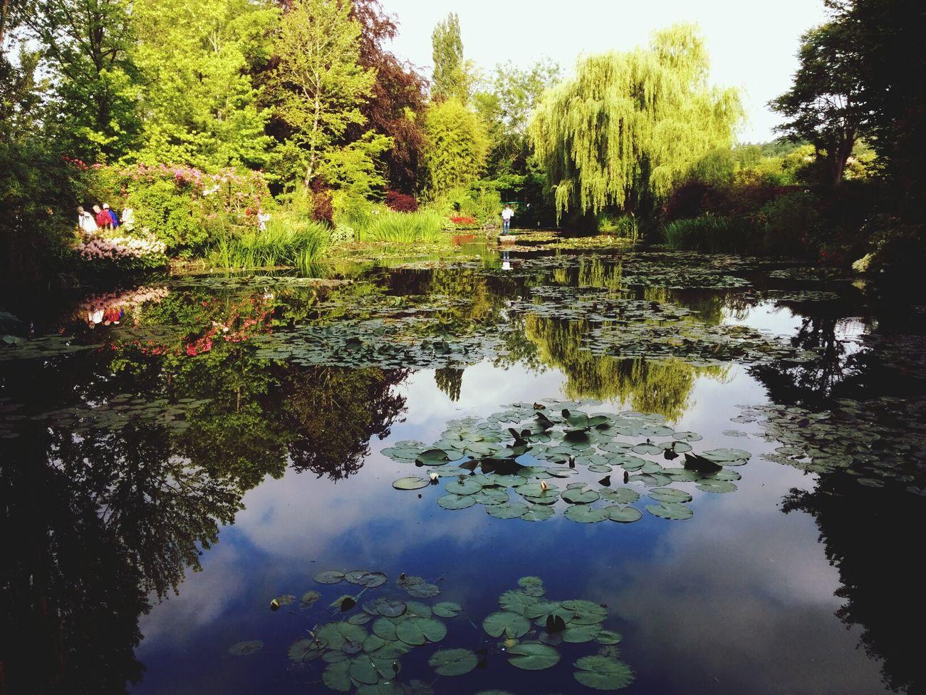 Monet House Jardin Flowers Beauty preshiosho :')