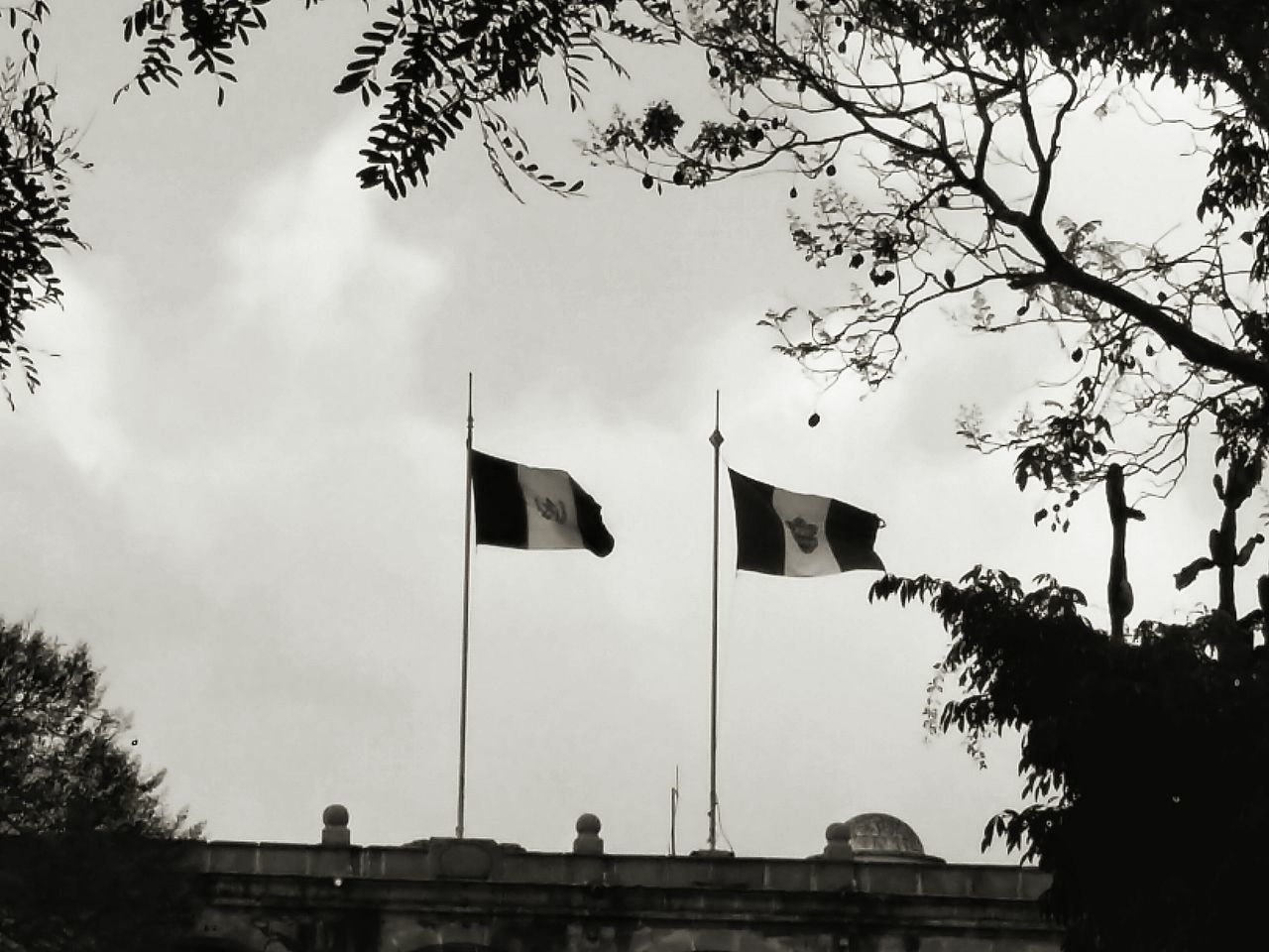 Two flags in the sky. Flag Patriotism Symbolism Sky National Icon Tree Cloud - Sky Outdoors Flag Pole Day Nature Shadows Guatemala Antigua Guatemala Guatemala Flag Municipalidad Building Park Black And White Black And White Photography