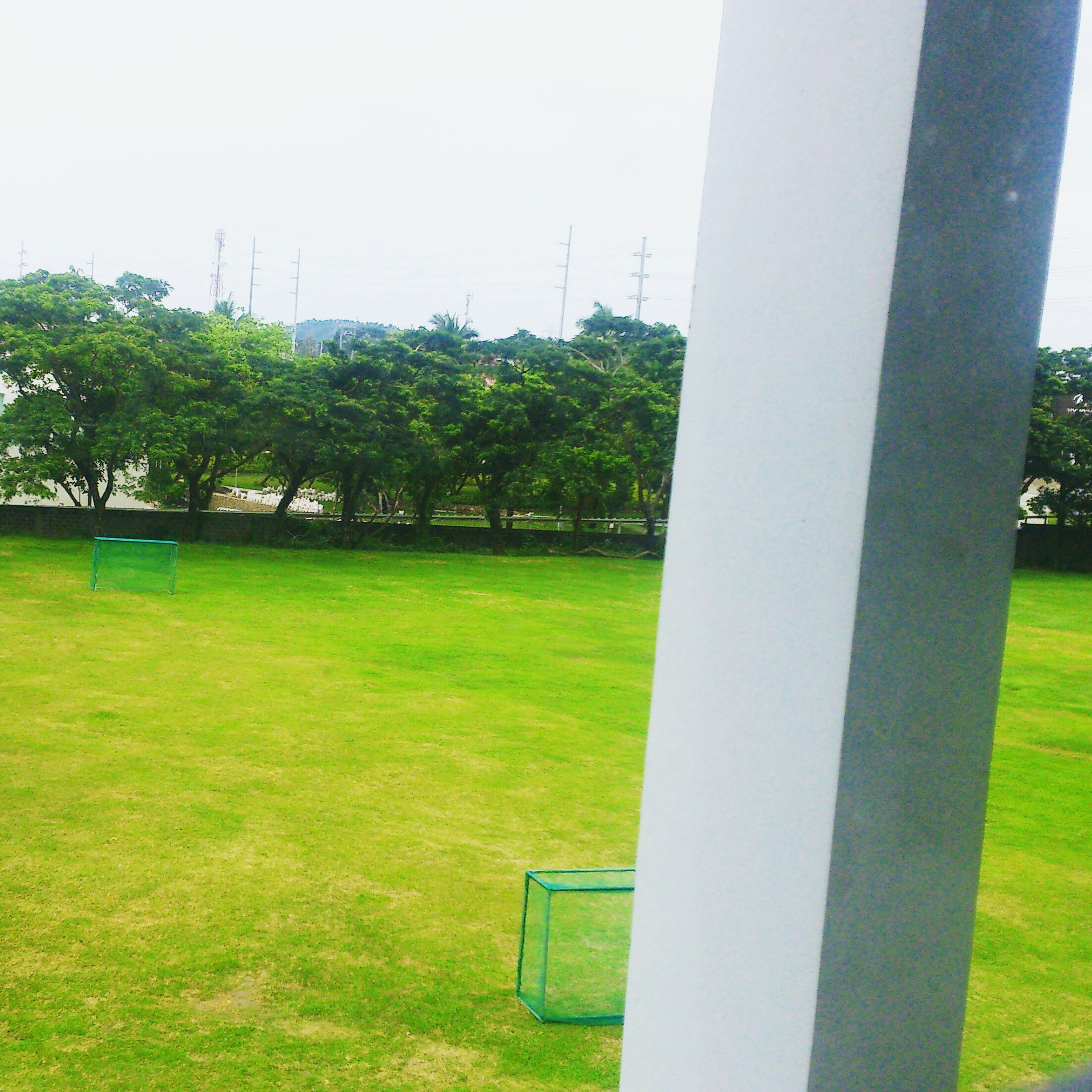 grass, green color, tree, grassy, lawn, field, park - man made space, growth, grassland, built structure, clear sky, architecture, green, nature, day, building exterior, landscape, sky, tranquility, park