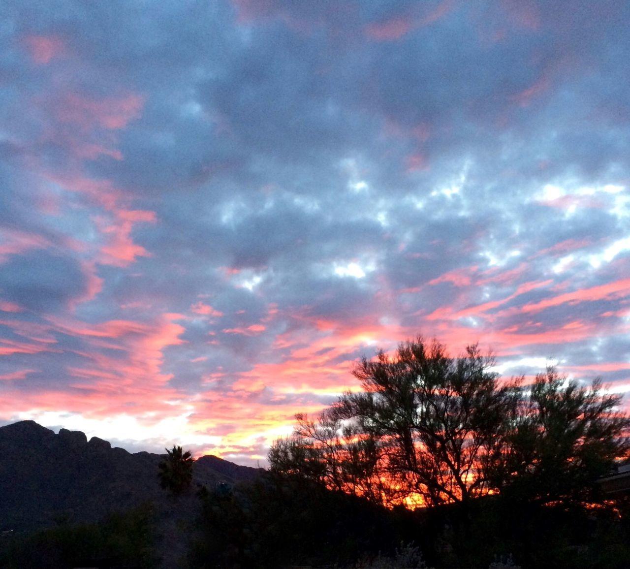 Dramatic Arizona sunset Beauty In Nature Cloud Cloud - Sky Cloudy Dramatic Sky Dusk Idyllic Landscape Mountain Nature Non-urban Scene Orange Color Scenics Silhouette Sky Sunset Tranquil Scene Tranquility Tree Tree Silhouette Weather