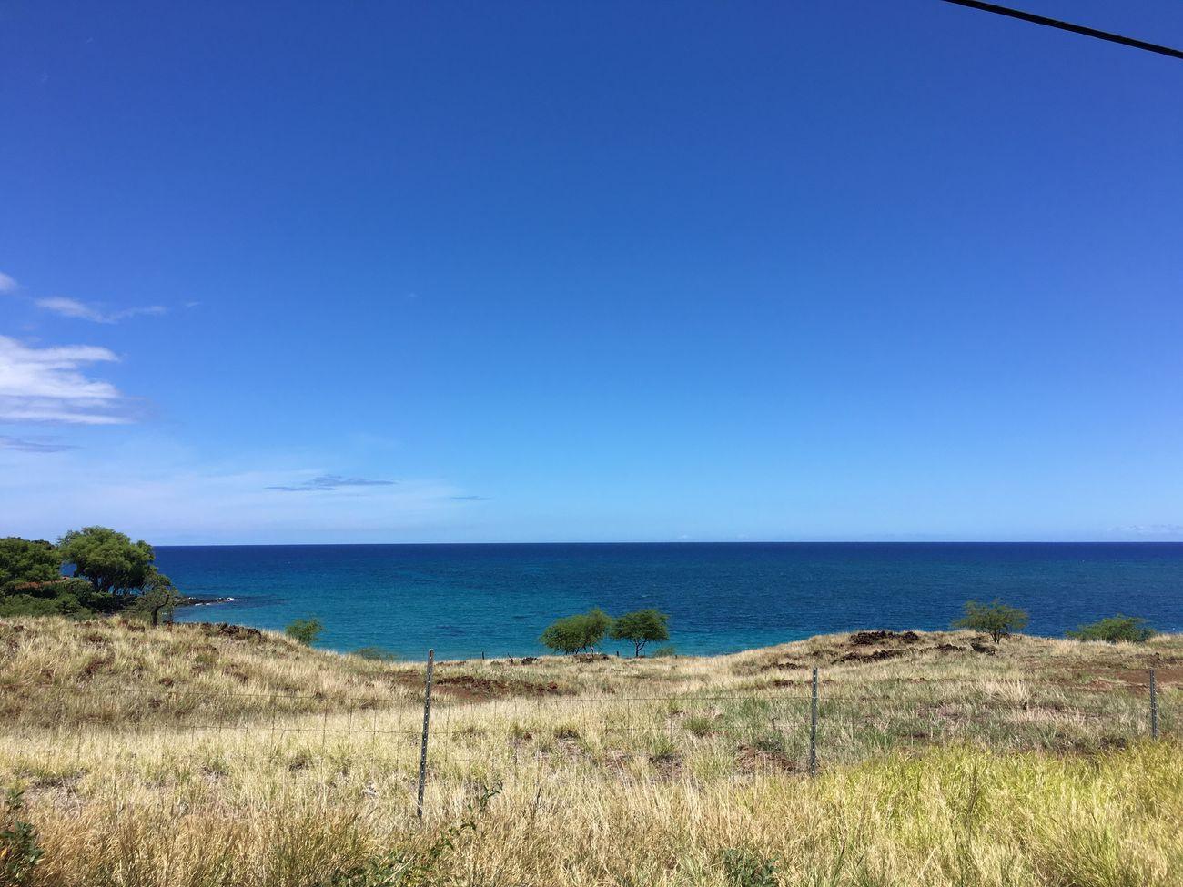 No Filter Mau'u Mae Big Island Big Island Hawaii