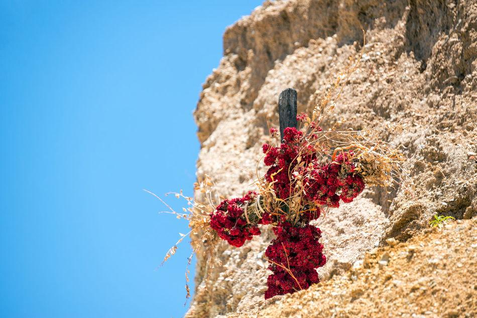 Beautiful stock photos of cross, Arequipa, Blue, Catholicism, Christianity