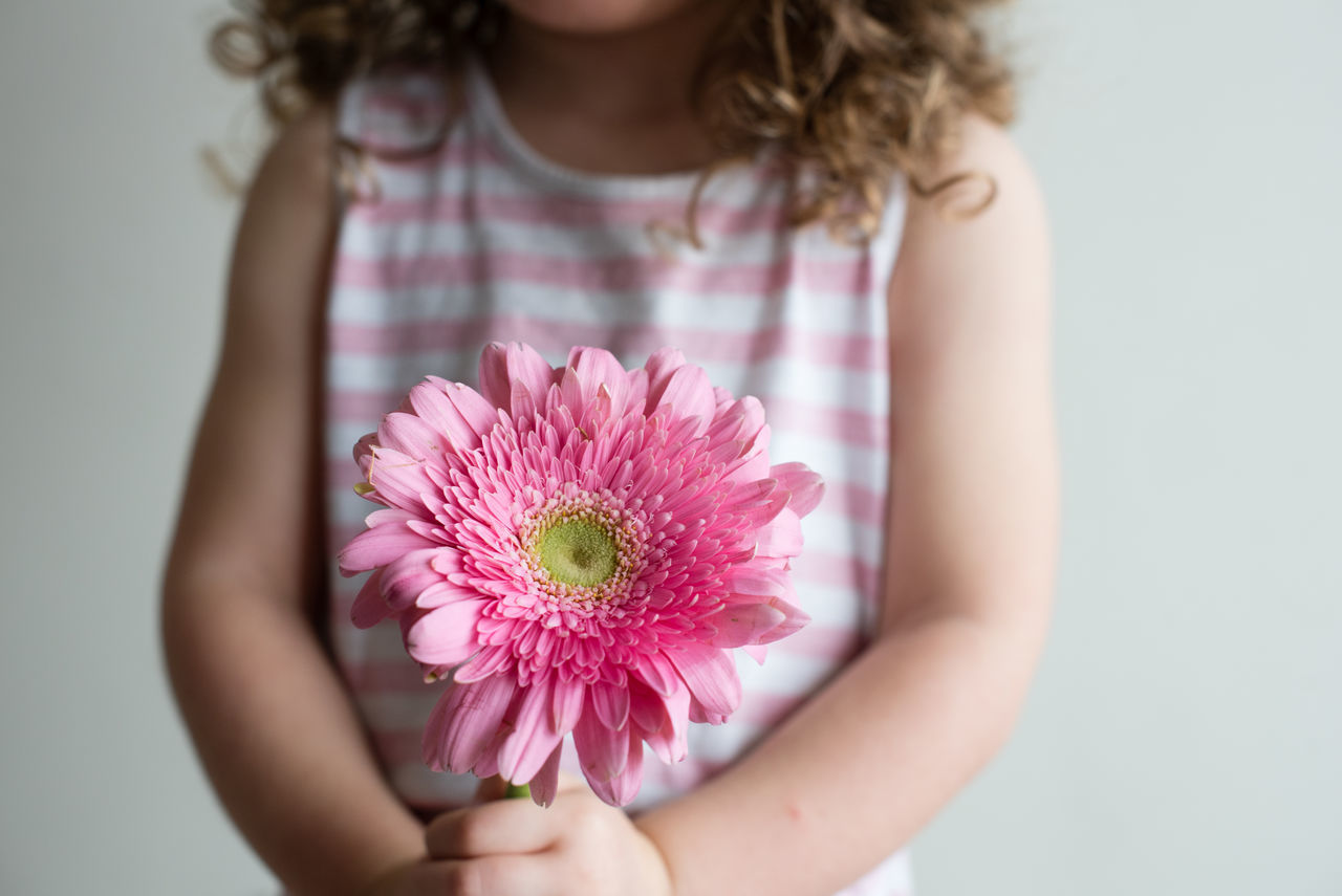 Little girl holding pink gerbera daisy Beauty In Nature Child Childhood Children Only Close-up Day Flower Flower Head Focus On Foreground Fragility Freshness Girls Holding Human Hand Indoors  Nature One Girl Only One Person People Petal Pink Color Real People