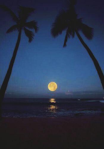 Emotions Moon Beach