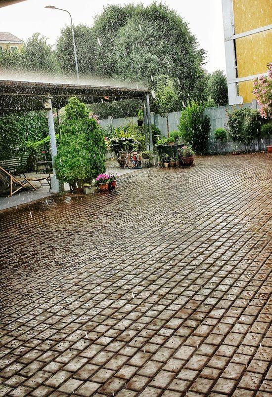 Rain Cityraining Lostintherain Eyeemphotography