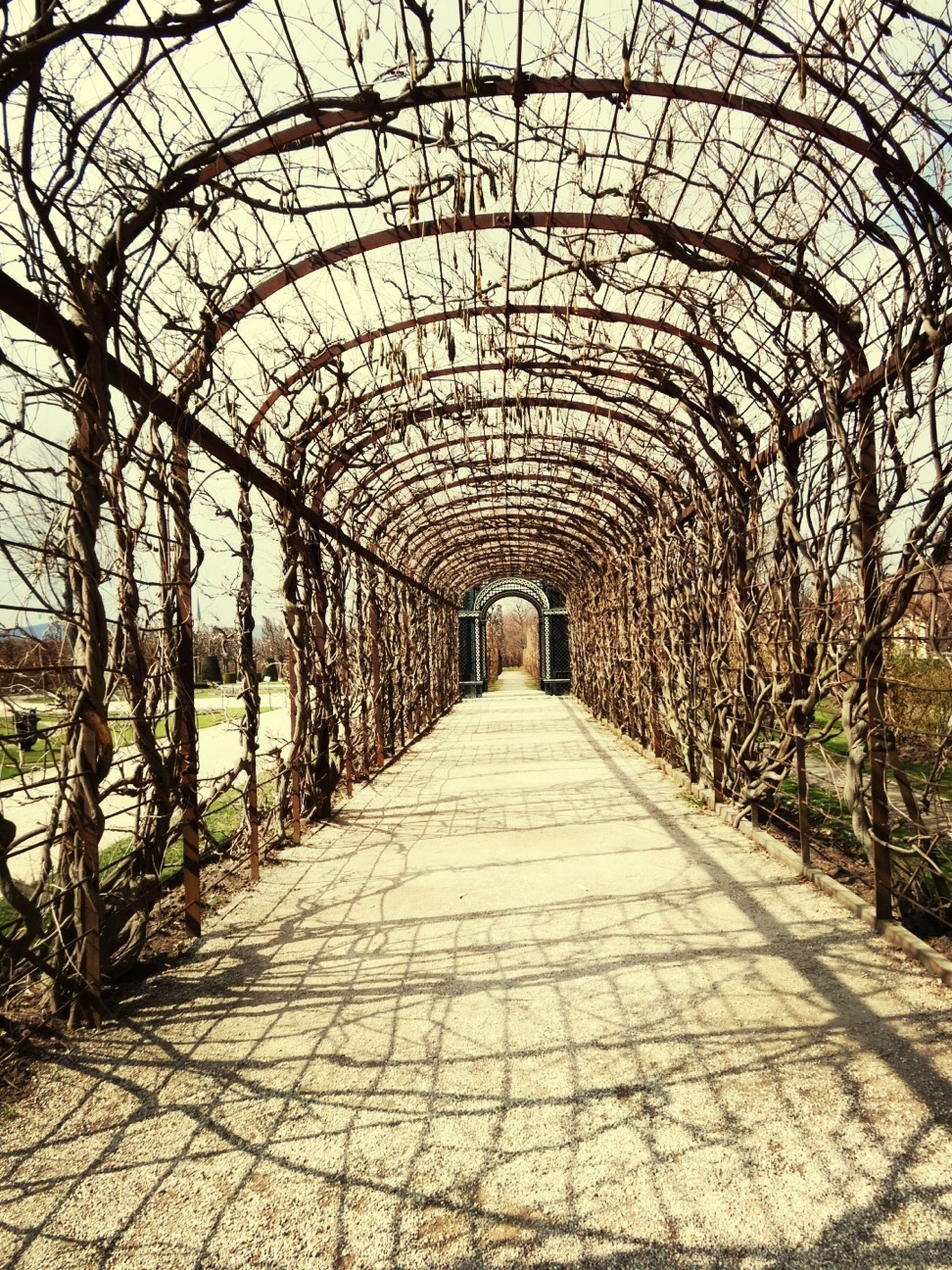 Jane Palace Garden Brunswick