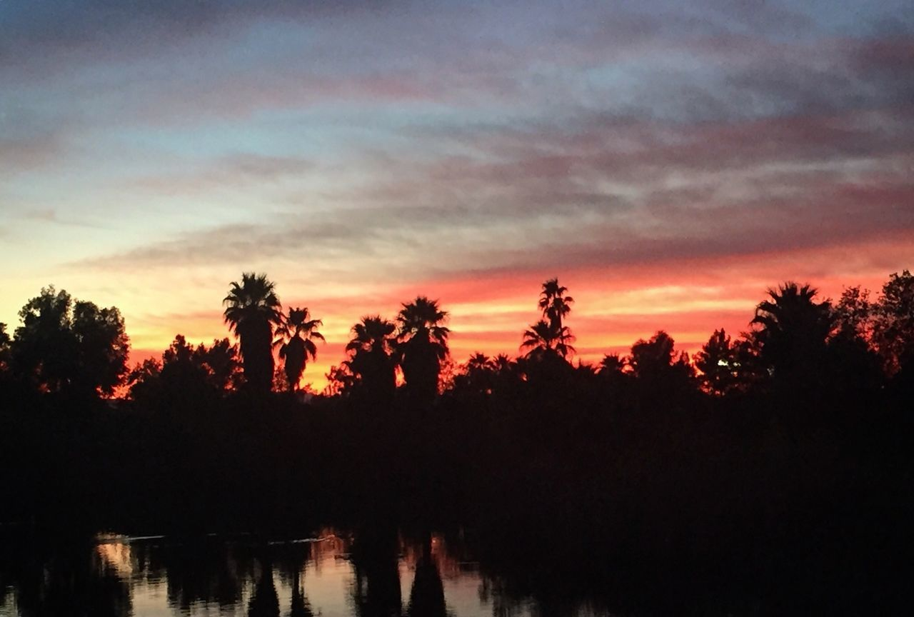 Goodnight Arizona in Phoenixzoo