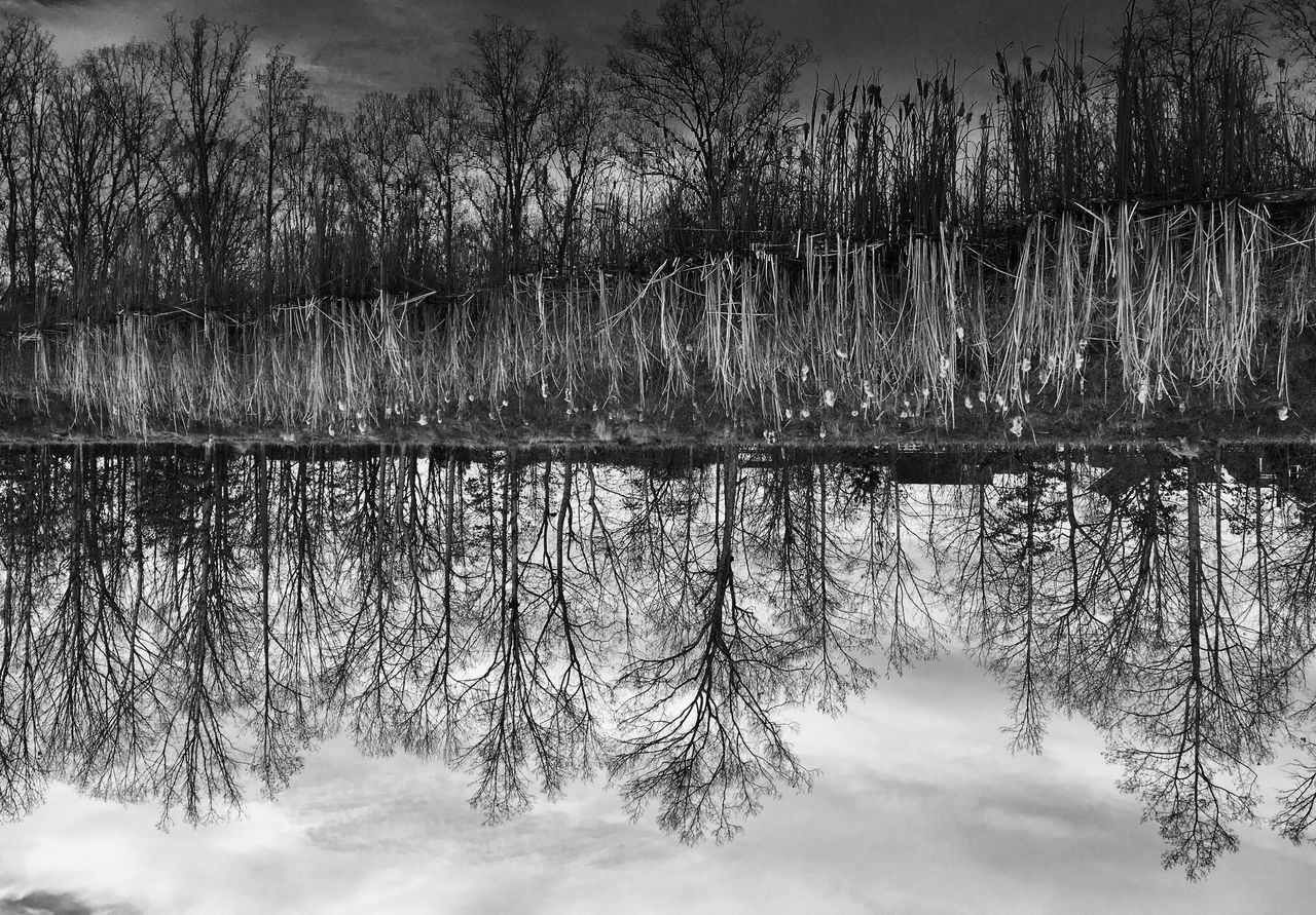 The upside down Nature Water Reflection Lake Tranquil Scene