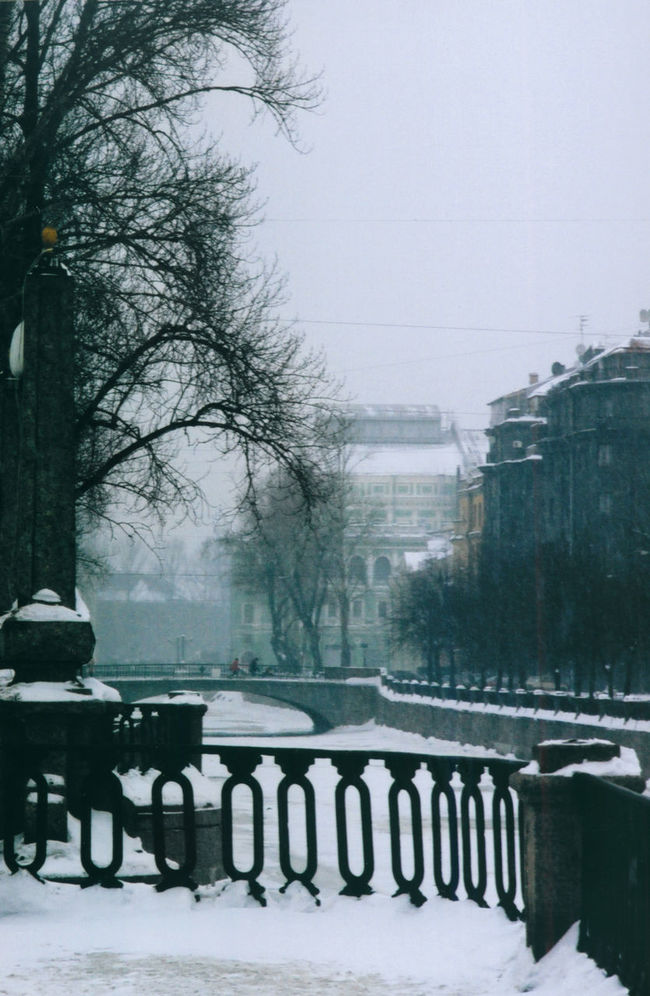 Bare Tree Canal City Cold Cold Temperature Day Film Photography Griboyedov Canal Historical Center Nature No People Outdoors Quay Saint Petersburg Season  Sky Snow Tree Weather White Winter