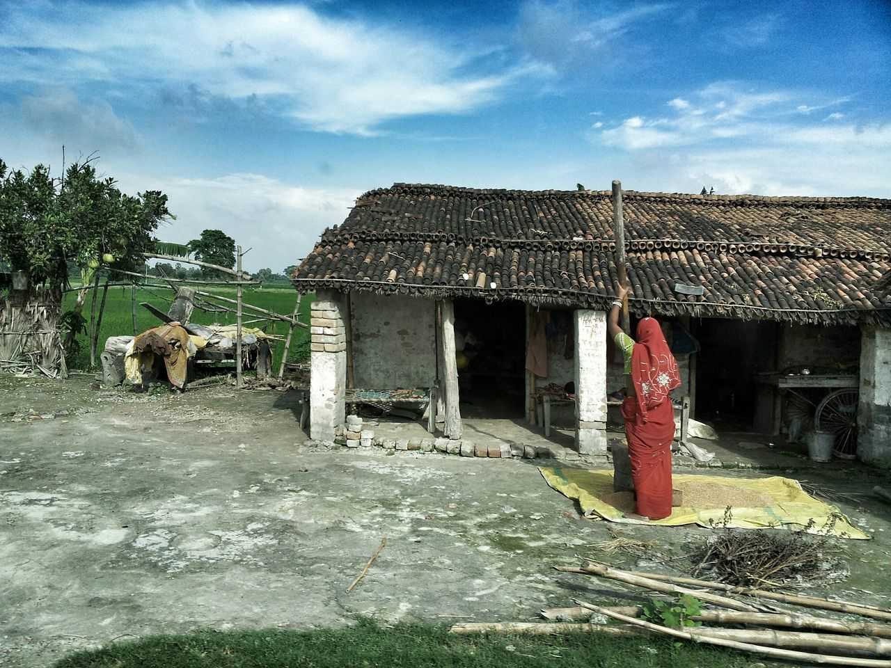 animal themes, domestic animals, sky, built structure, day, architecture, mammal, one animal, no people, livestock, outdoors, building exterior, nature