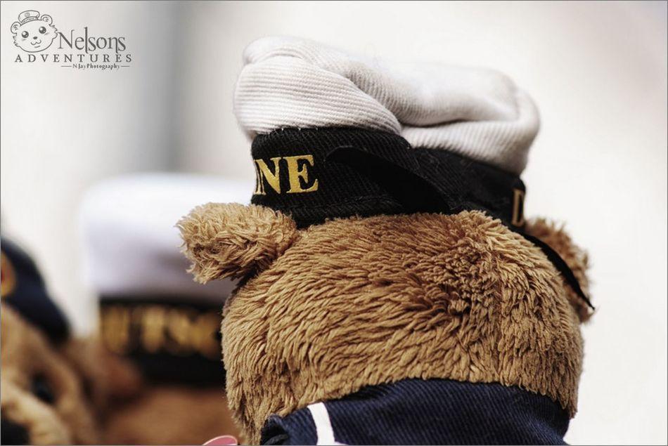 NelsonsAdventures The Purist (no Edit, No Filter) Taking Photos EyeEm Best Shots Teddybear