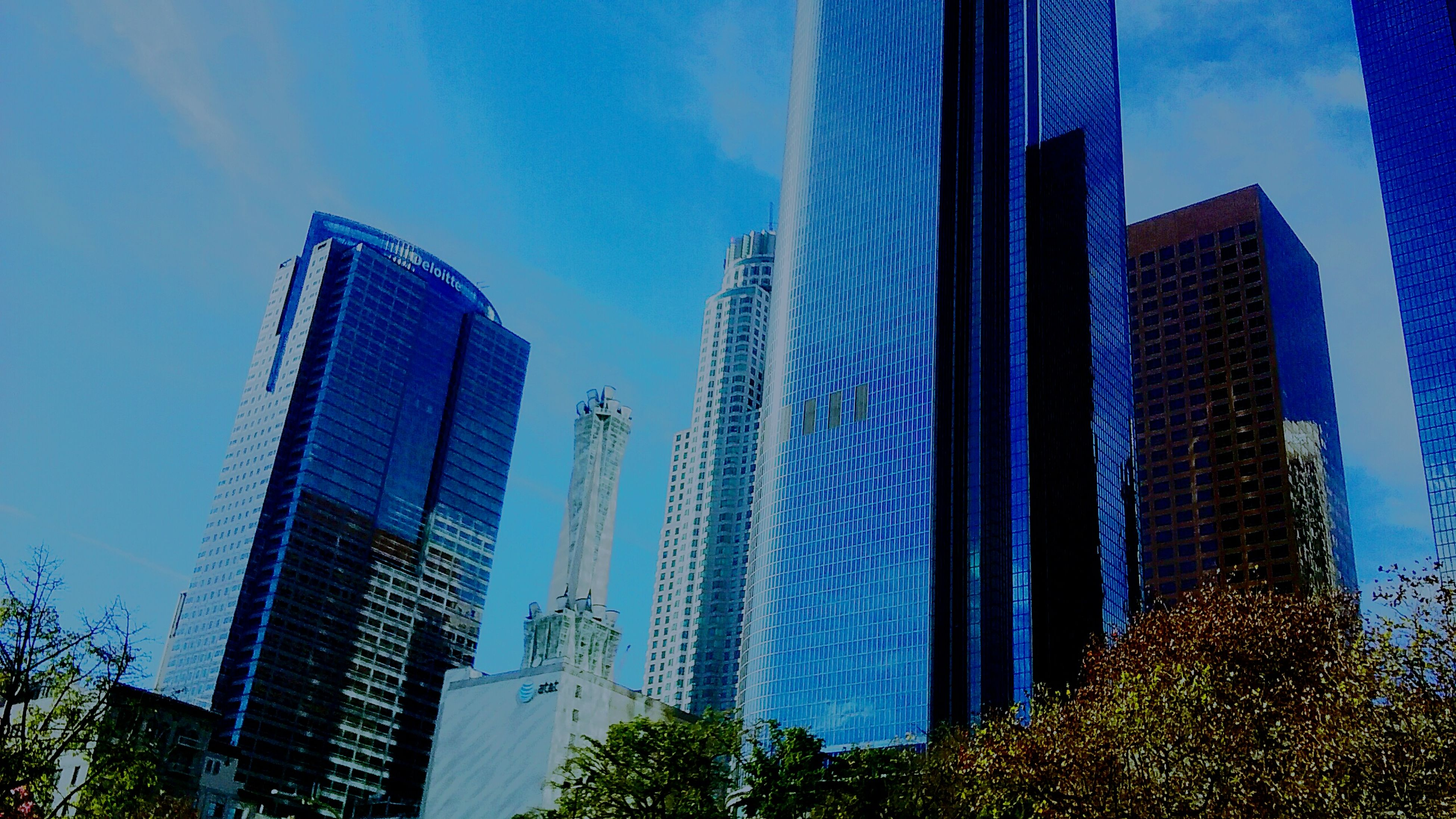 architecture, building exterior, built structure, skyscraper, city, modern, tall - high, low angle view, office building, tower, blue, sky, building, growth, tree, tall, financial district, glass - material, urban skyline, city life
