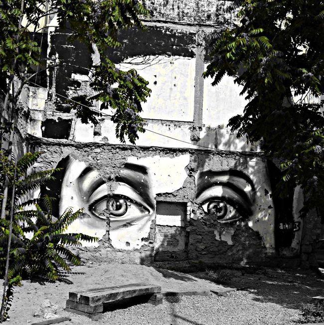 StreetArt • Athens / Greece Zoezoi