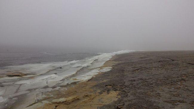 Ice Beach Mist