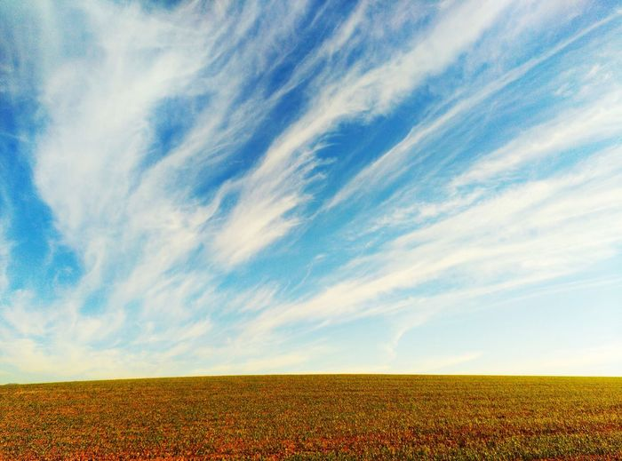 Cel Agriculture Rural Scene Nature Sky Scenics Landscape Cloud - Sky Landscape_Collection Sky And Clouds Nubes Y Cielo Cel I Núvol Cel I Terra Skyandcloud Sky_collection