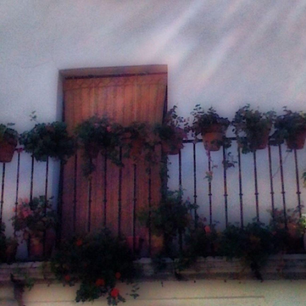 Balcones en Zafra