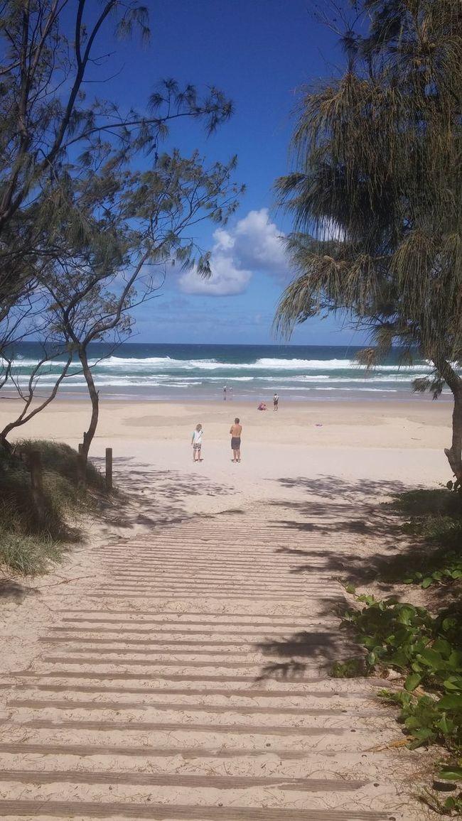 Nsw Beach Australia Blue Wave