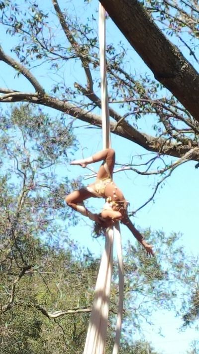 Tree fairy Tree Low Angle View Nature Day Sky Acrobatic Performance Celebration Beauty In Nature Outdoors Bare Tree Branch Nature Tree Art Is Everywhere