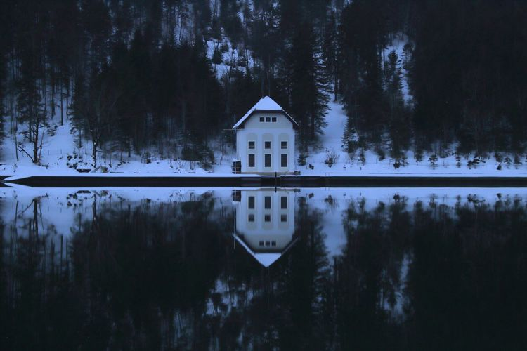 Haus am Plansee Shades Of Winter Earth ExploreEverything Exploring Reflection Night Tree Water Winter Forest Blue Snow Lake Cold Temperature No People Nature Outdoors