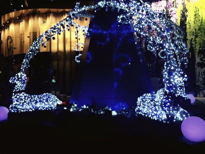 Christmasdecorations Reindeer Sighting Splendor