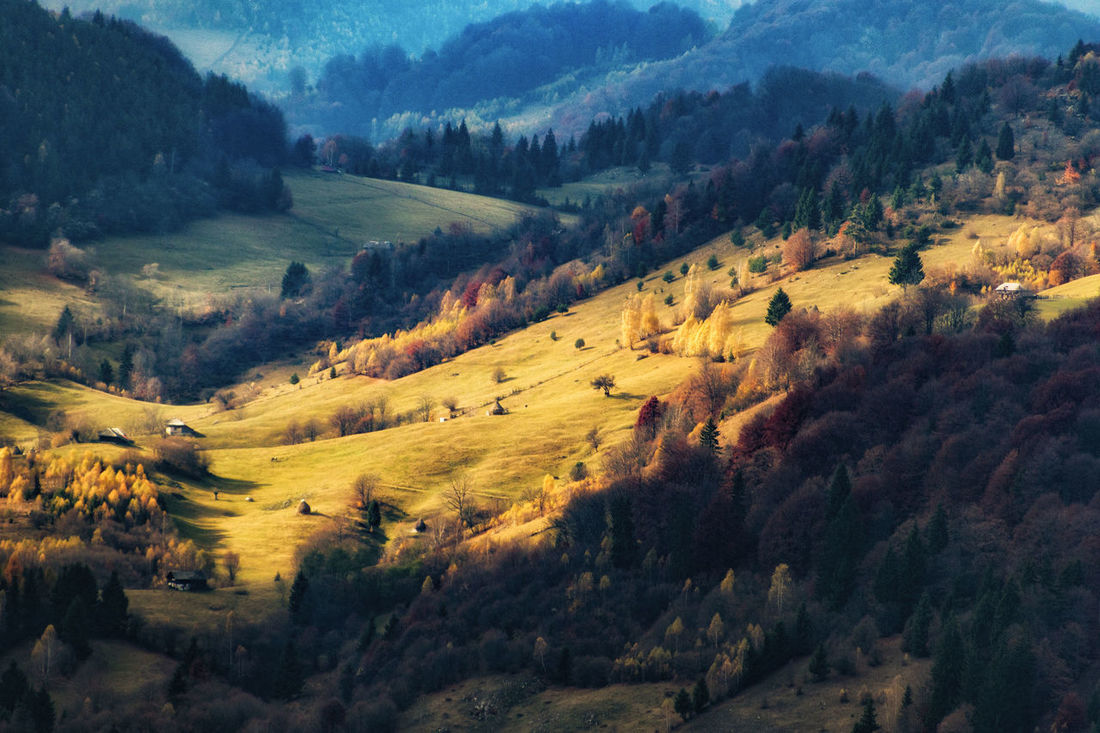 Autumn Autumn Colors Beauty In Nature Bucegi Bucegi Natural Park Landscape Light And Shadow Mountain Mountain Range Nature No People Tranquil Scene Tranquility The Great Outdoors - 2017 EyeEm Awards EyeEmNewHere