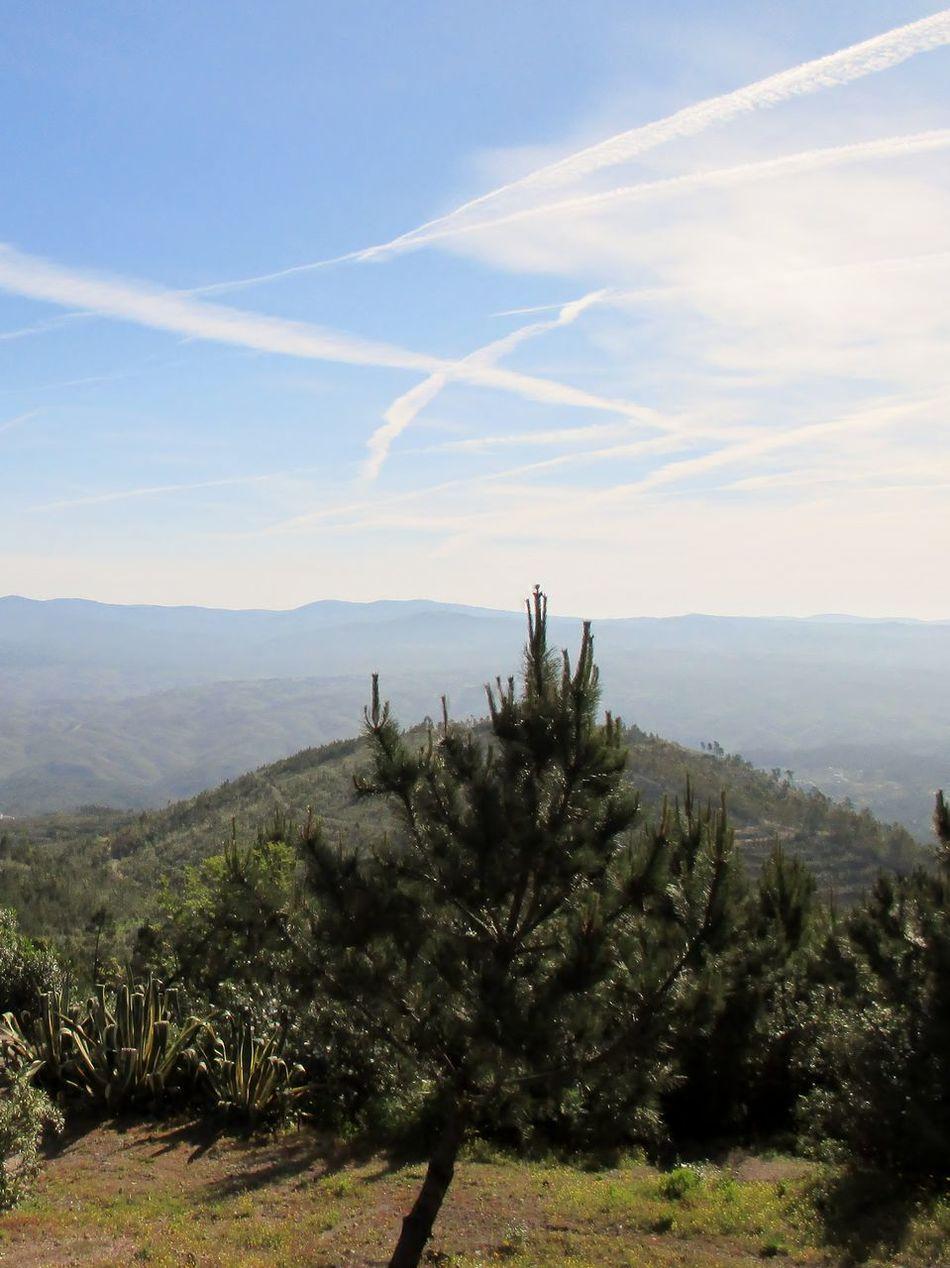 Landscape Nature Sky Tranquility Beauty In Nature Portugal Blue Sky Vila De Rei Sky Drawing