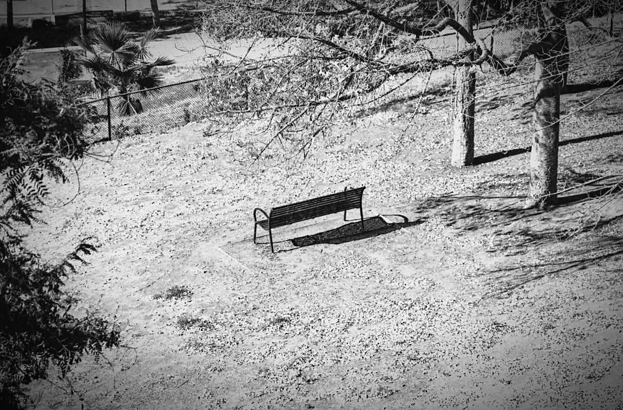 Bench Day No People Communication Outdoors Nature Canon Film Camera 35mmfilmphotography Film Photography Filmisnotdead Filmcamera Film Noir