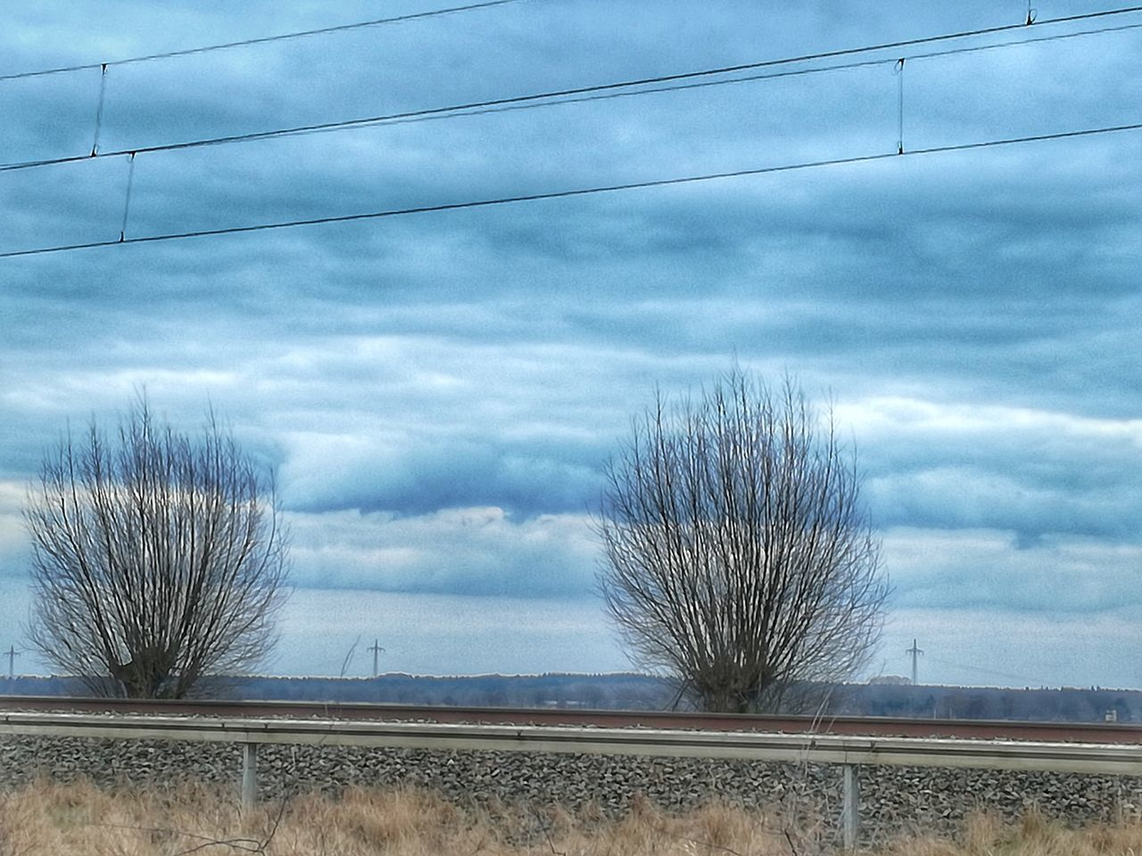 cloud - sky, sky, day, outdoors, bare tree, no people, nature, beauty in nature, tree