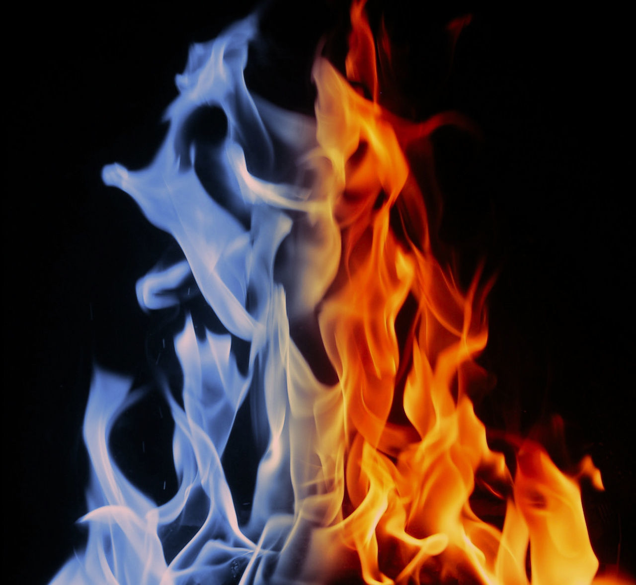 burning, flame, close-up, black background, no people, motion, night, heat - temperature, outdoors