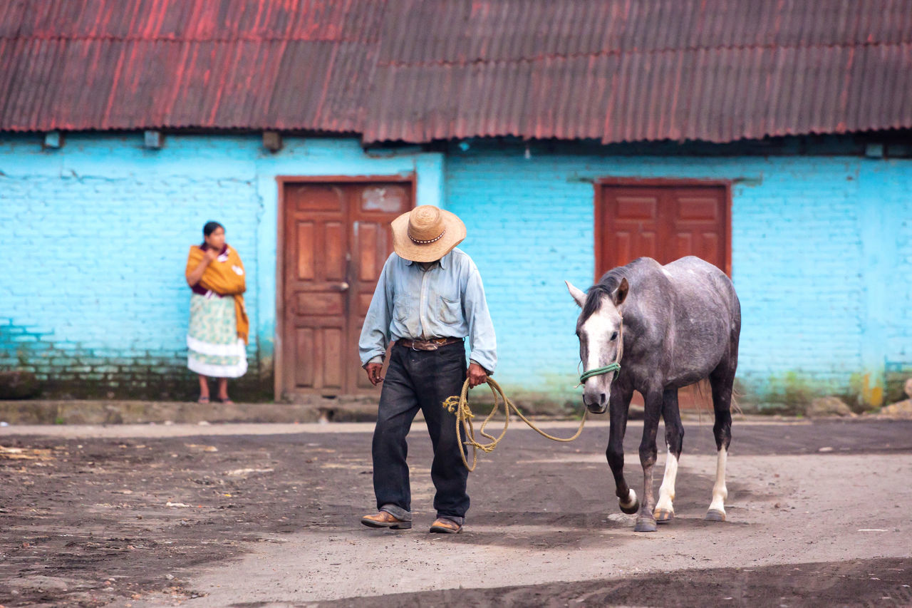 I took this picture of in the town of San Juan Parangaricutiro, México. This is a typical street scene of the country side in rural Mexico. Blue Livestock Mexico Michoacan Mule Rebozo Sombrero The Street Photographer - 2017 EyeEm Awards