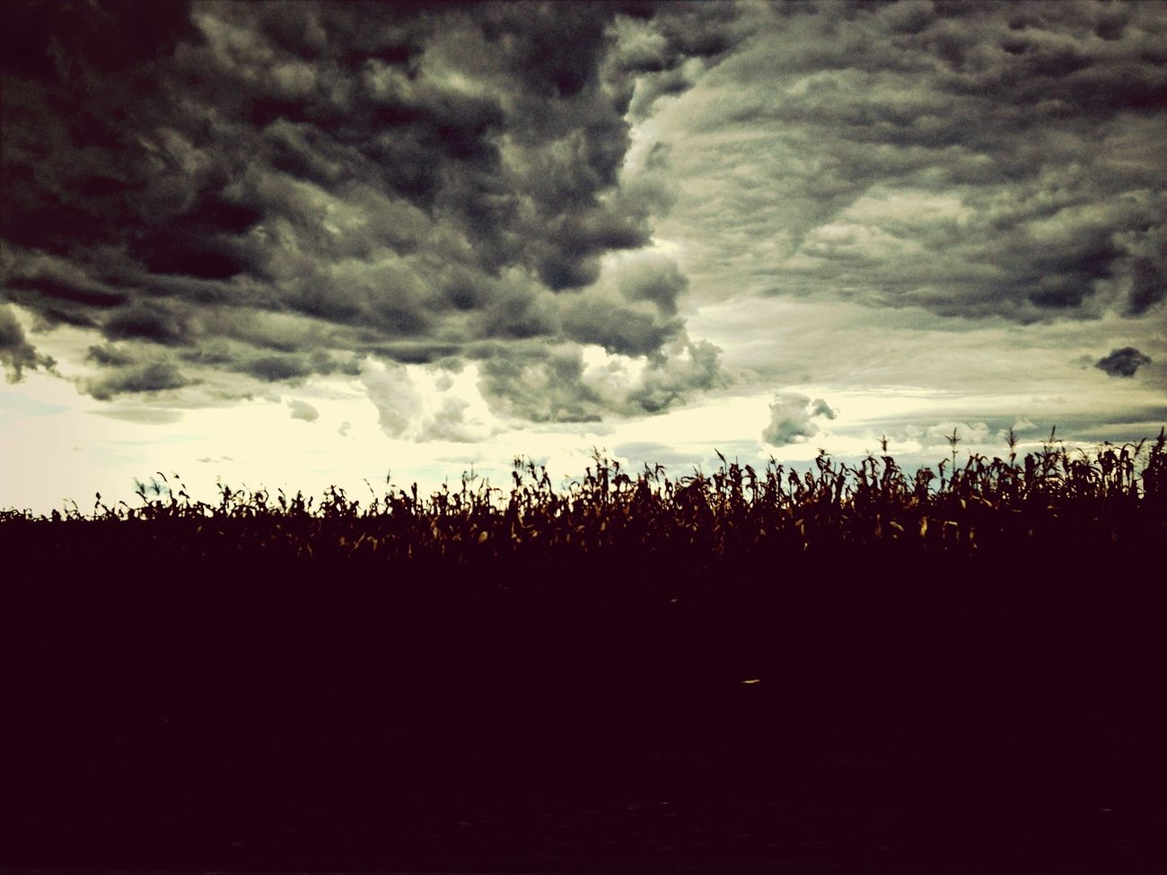 IPhoneography Cloudporn Skyporn Sky_collection
