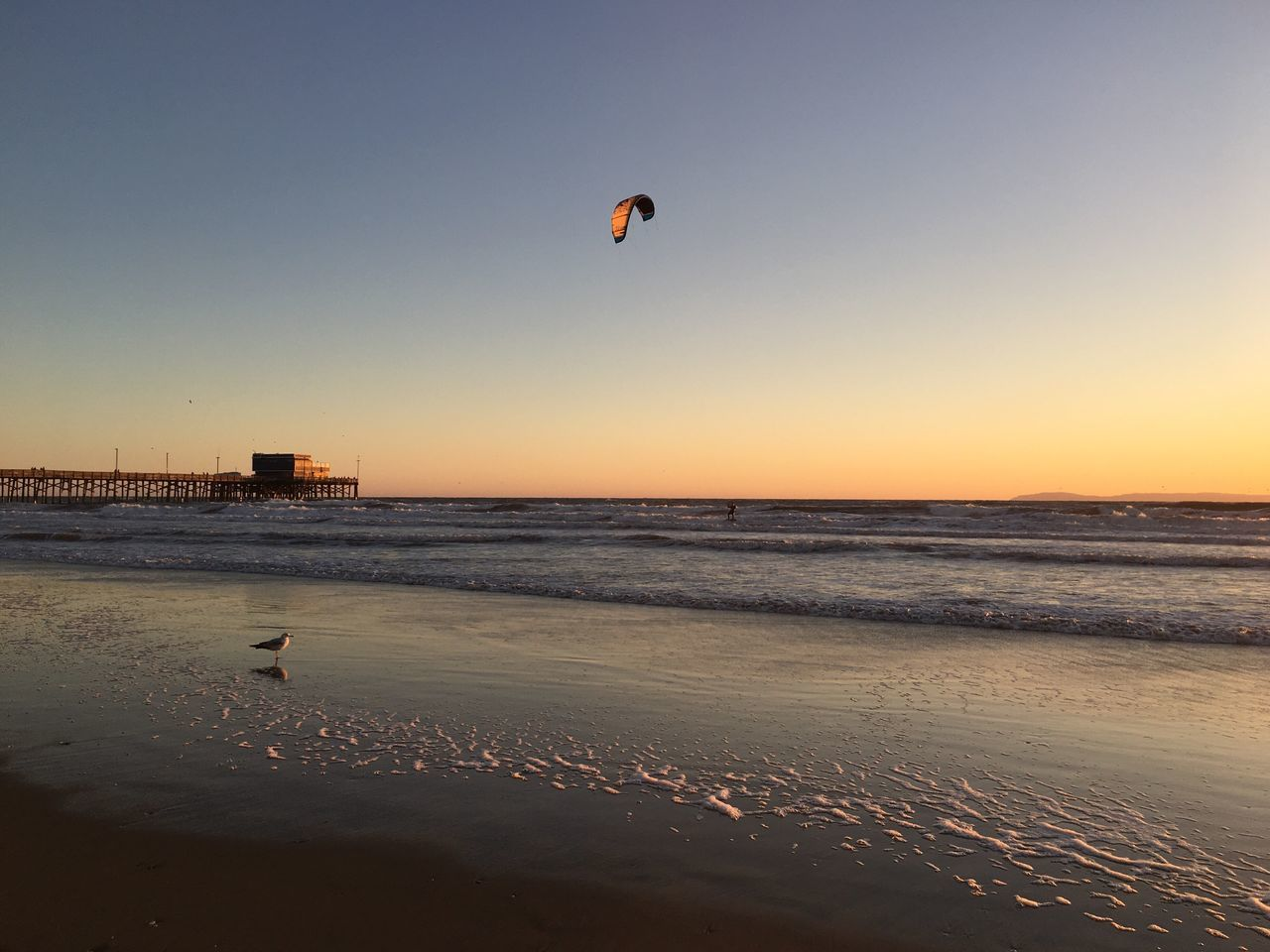 Kite boarding Sea Beach Horizon Over Water Clear Sky Sand Nature Unrecognizable Person Water Beauty In Nature Outdoors Leisure Activity Tranquil Scene Lifestyles Scenics One Person Sunset Tranquility Extreme Sports Kiteboarding