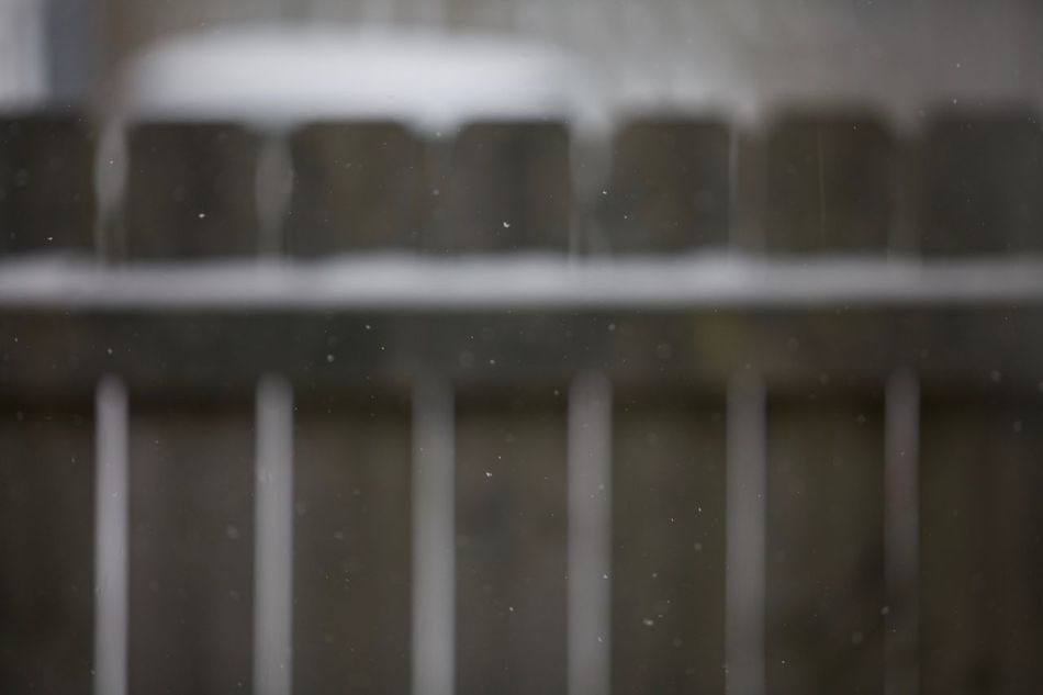 Backgrounds Bokeh Fence Nature Season  Snow Weather Winter