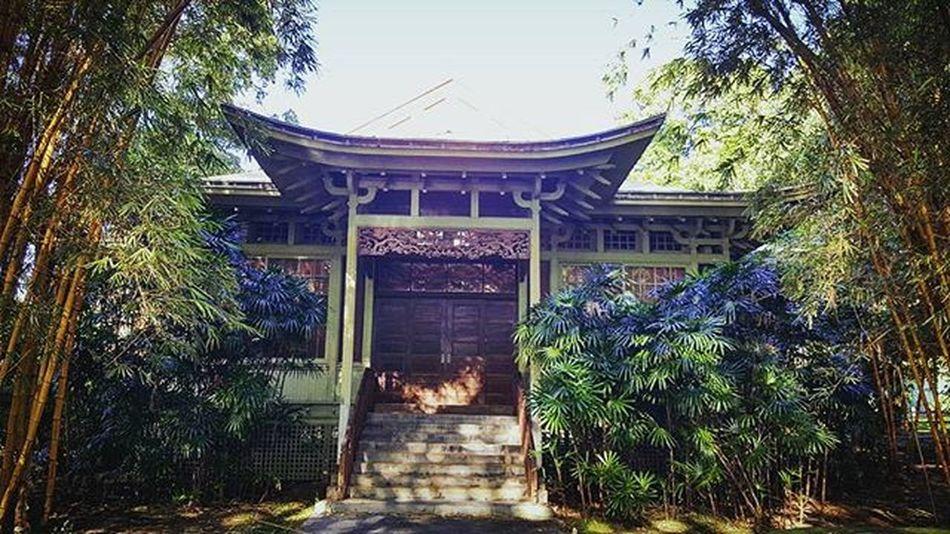 Watching the time go by... Temple Moanalua Moanaluagardens Mosquitosloveme Oahu HiLife Epichi Hawaiiunchained Latepost Lifeisgood Luckywelivehawaii