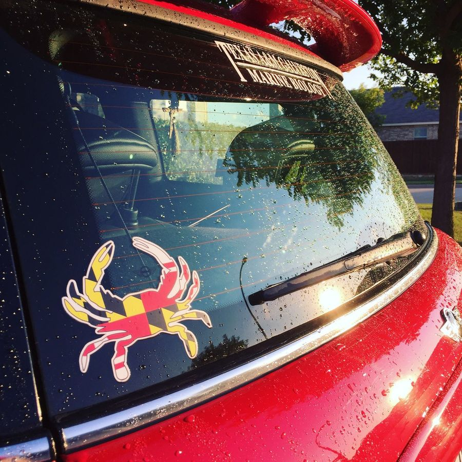 Maryland Crabtown AggiePride Aggies Mini Cooper S Transportation Glass - Material Fish Water Outdoors Multi Colored Creativity Raindrops