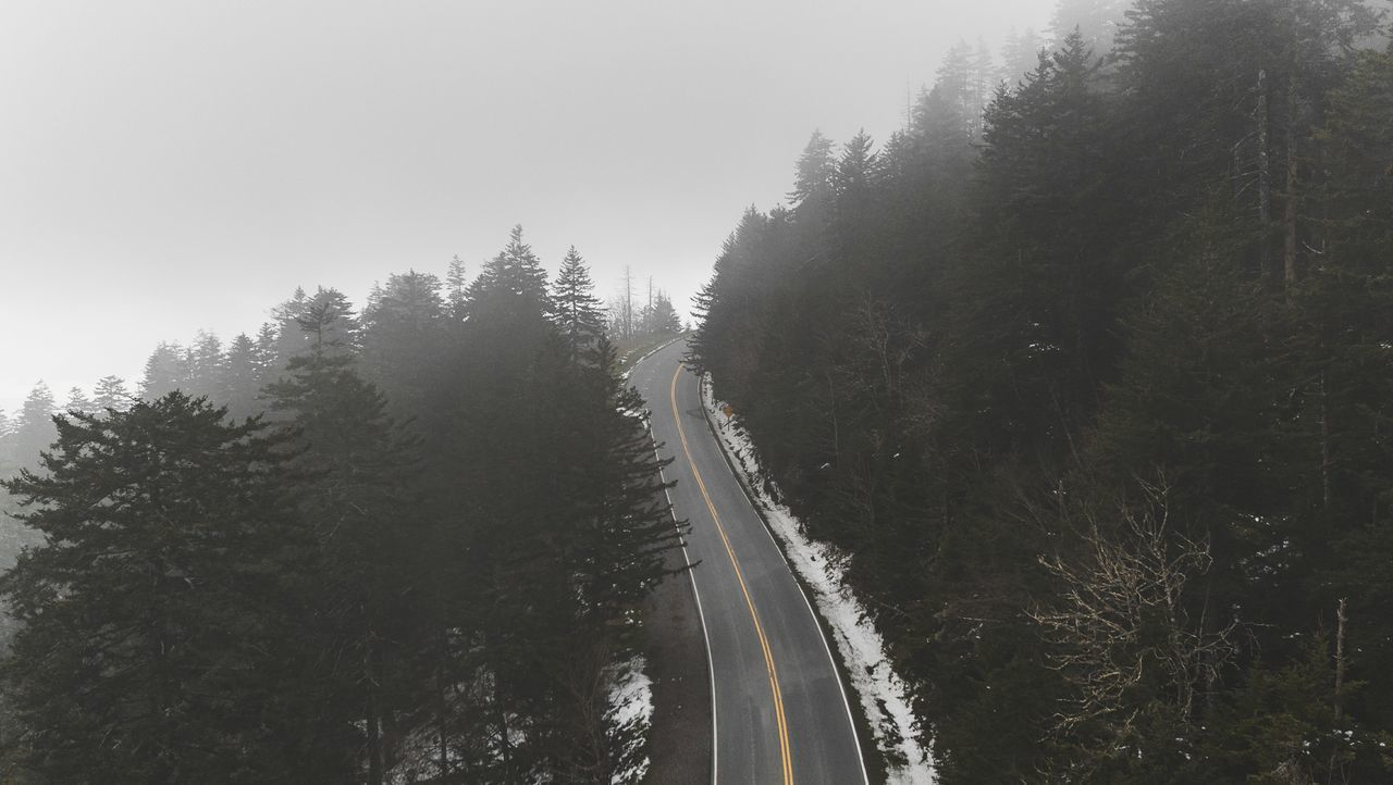 Tree Outdoors No People Day Sky Nature Roadtrip Wilderness Wanderlust Travel Drone  Aerial View Street Road Aerial Forest Tree Sky And Clouds Travel Destinations Fog Foggy Morning Weather Lost In The Landscape