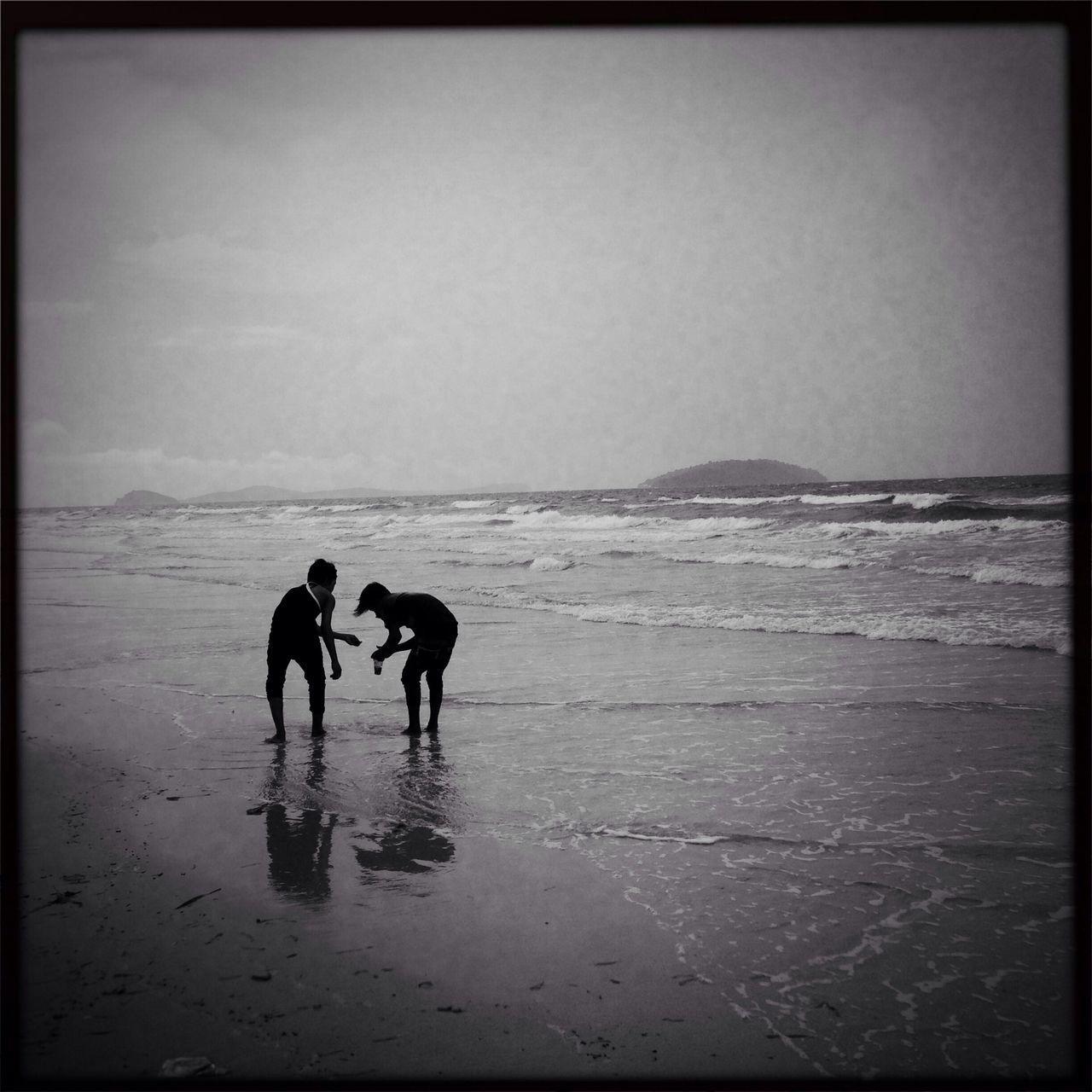 Two men collecting seashells on beach