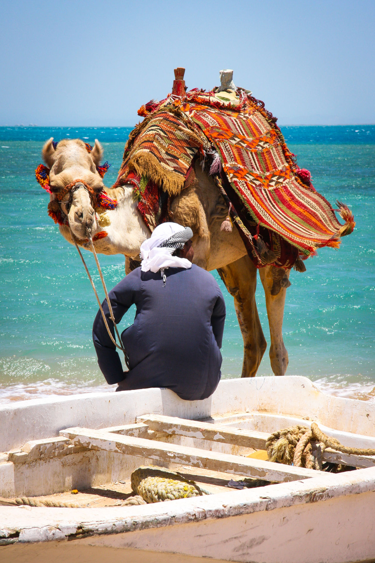 Beautiful stock photos of ägypten, Abandoned, Animal Themes, Beach, Boat