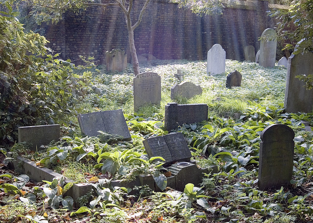 tombstone, cemetery, memorial, gravestone, grave, day, graveyard, no people, plant, sunlight, outdoors