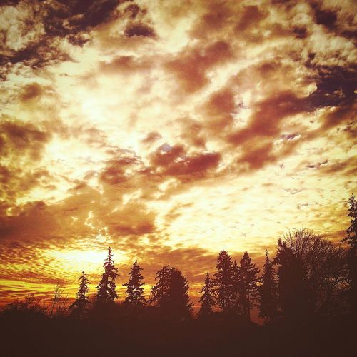 Dramatic Sky Beauty In Nature Sunlight Scenics Outdoors Nature Sky Sunset Travel Photography Beauty In Nature Look Up And Thrive Memorable Moment Landscape_photography Autumn 2016 Nature Illuminated Landscape Night Travel Happiness Wish You The Most Happiest Moments! Tranquil Scene Transitional Moments Cloud - Sky Sundown...♥