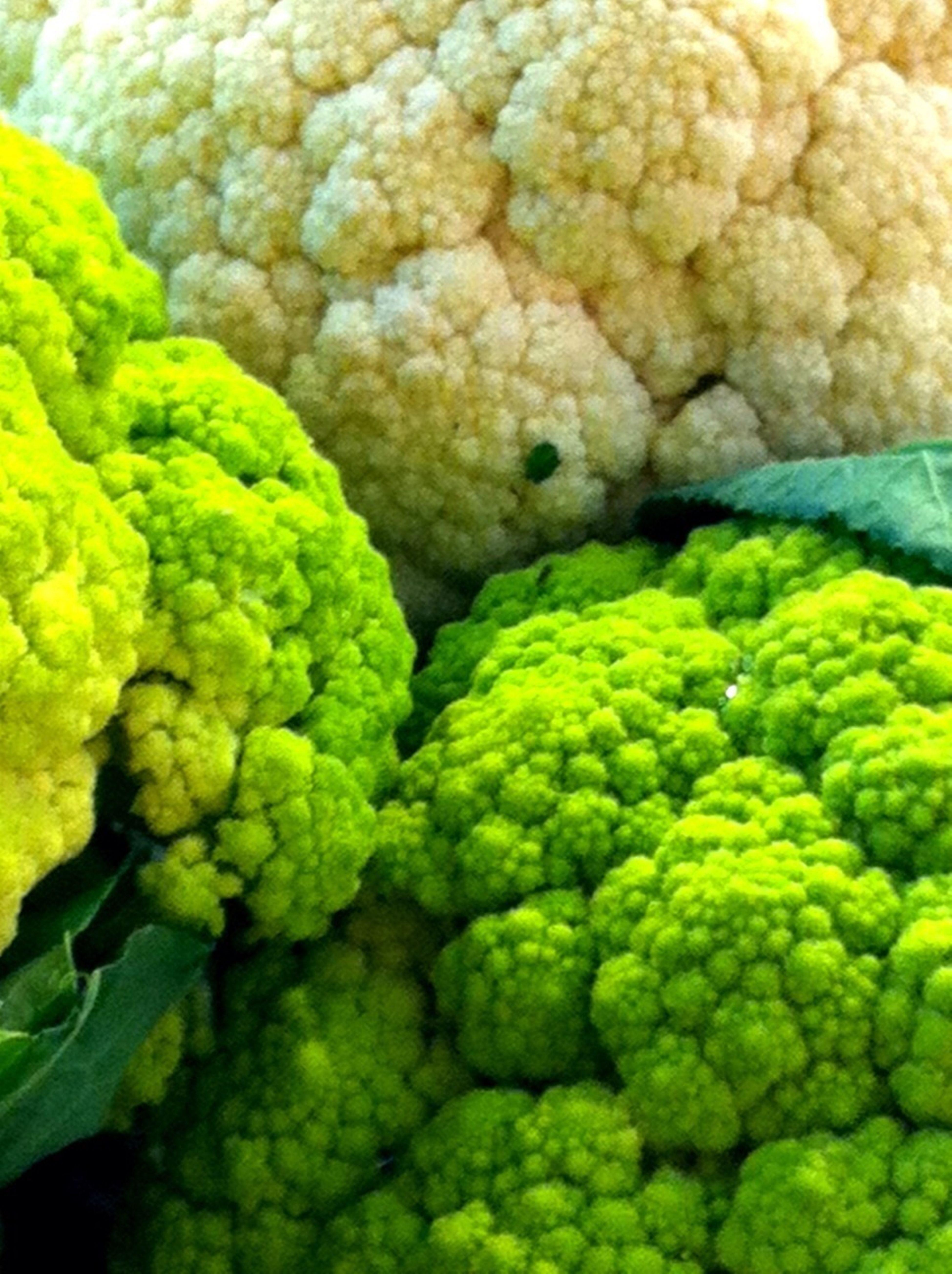Yummy Food Market Colors Superfan