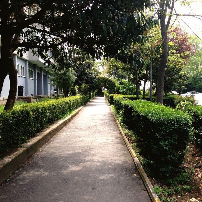 Walking Relaxing Atakoy